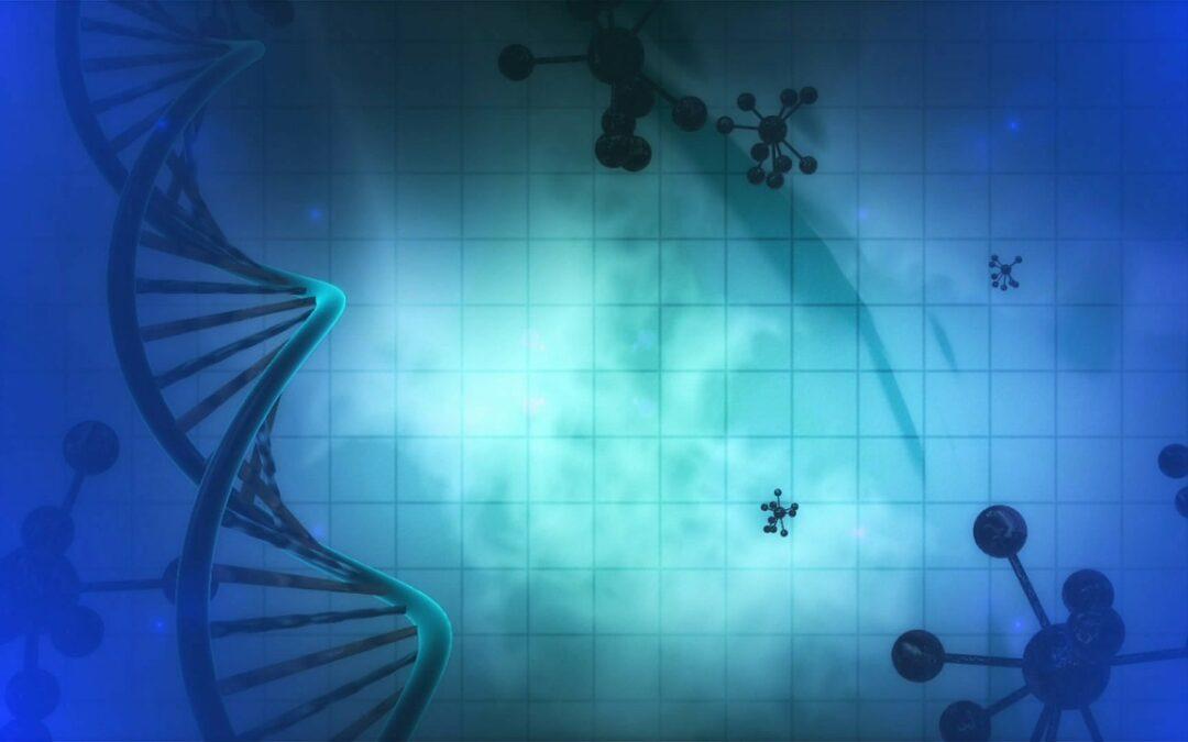 Curso activación de nuestro cuerpo energético-luz y ADN